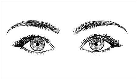 Sketched vector eyes with long lashes isolated on white background. Vector illustration.