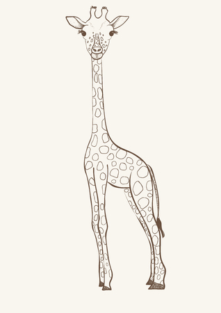 Hand drawn vector giraffe isolated on pink background.