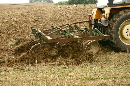 ploughing: ploughing on field Stock Photo