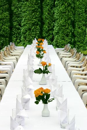 catering table: View at near symmetrical table ready to start party among green