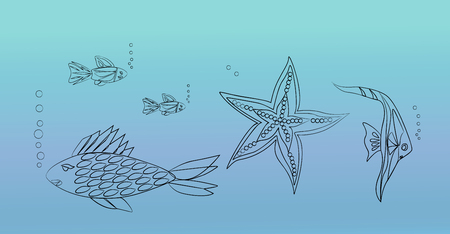 oceanside: Fish and starfish live in the sea.Outline.