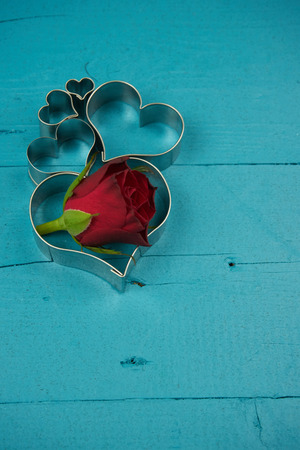 heart with rose on blue background Stok Fotoğraf