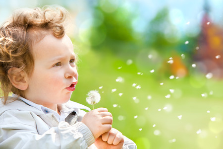 curly hair child: beautiful blond curly hair child blow dandelion outdoor in a park Stock Photo
