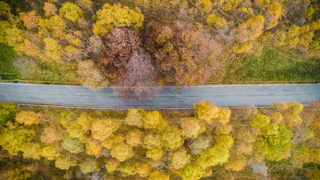 Overhead aerial top view over straight road in colorful countryside autumn forest.Fall orange,green,yellow,red tree woods.Mountain rectilinear street path background.Straight-down above perspective Stock Photo