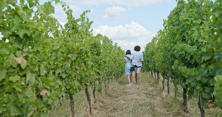 Romantic couple walking thru green vineyards. Back follow wide shot.Friends italian trip in Umbria