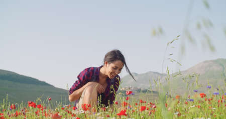 Smiling woman smelling and picking flowers from field.Front view,medium shot,slow motion.Crouched smiling woman among red flowers outdoor. Sunny weather