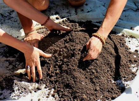 grower: Manual mixing the soil and  zeolite