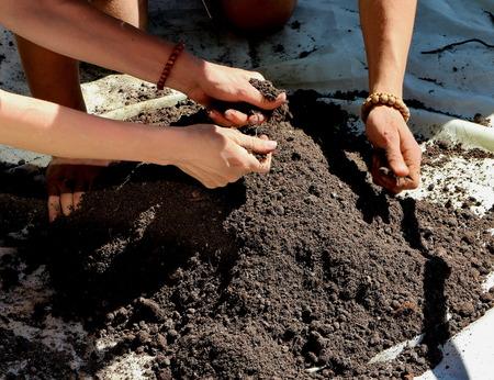 the mixing: Manual mixing the soil