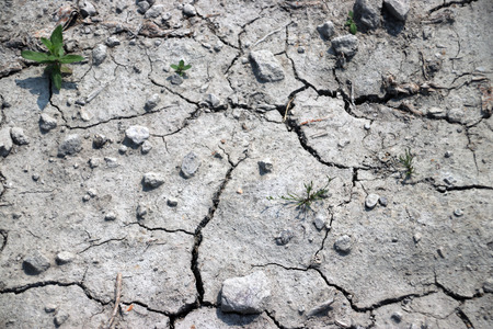 Mud ground dried up due to lack of rain in a polder in the Netherlands.
