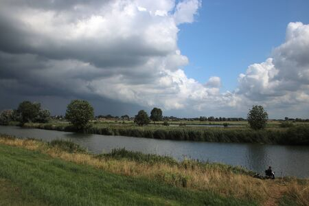 onions on farmland in Zevenhuizen in the Netherlands Stockfoto