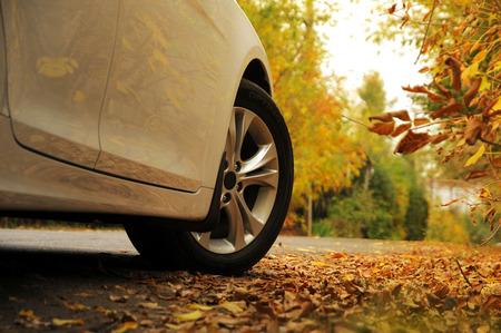 White car on autumn background