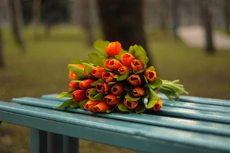 Flowers on the bench in the park