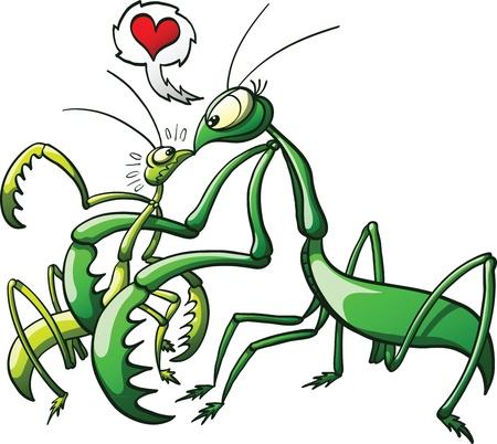 seduction: Female praying mantis intimidating mate while inviting him to make love