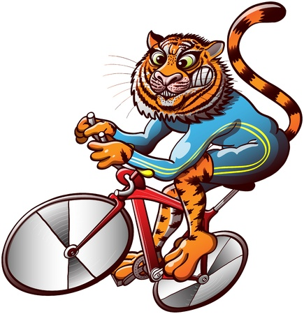 talented: Talented and powerful striped orange tiger riding a red modern cycle while competing in a sprint track event