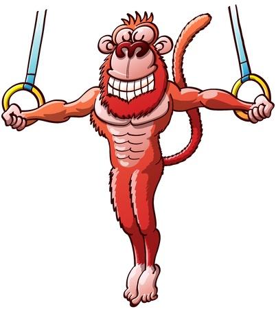 croix de fer: Singe rouge talentueux saisir les anneaux fixes, l'ex�cution d'une croix de fer impressionnant et souriant dans un �v�nement de gymnastique Illustration