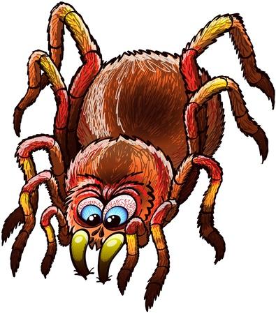 Tarantula grande y determinado con pelos urticantes, las piernas largas y ojos azules saltones mientras se detiene su andar y atacando furiosamente por hundir sus afilados colmillos profundamente en una superficie Vectores