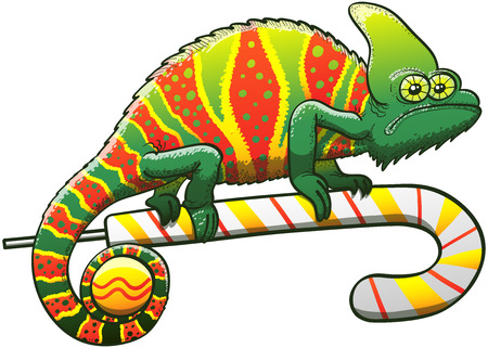 dubious: Exotic chameleon exhibiting a Christmas camouflage, staring at you in a dubious attitude and walking gripped to a candy cane while holding a bauble with its prehensile tail