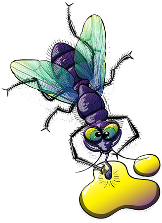 disgusting: Top view of a disgusting and mocking fly with violet body, green wings and bulging eyes while posing, smiling, staring at you and drinking from a weird yellow liquid on the ground