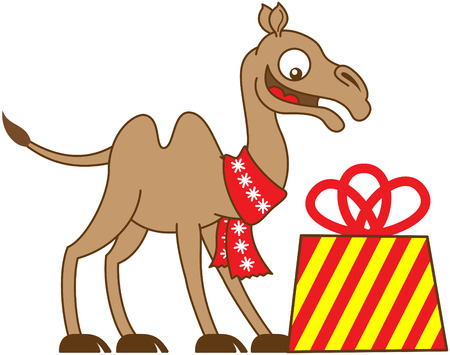 humps: Happy camel wearing a red Christmas scarf, smiling and looking fully surprised when receiving a big and beautifully decorated gift