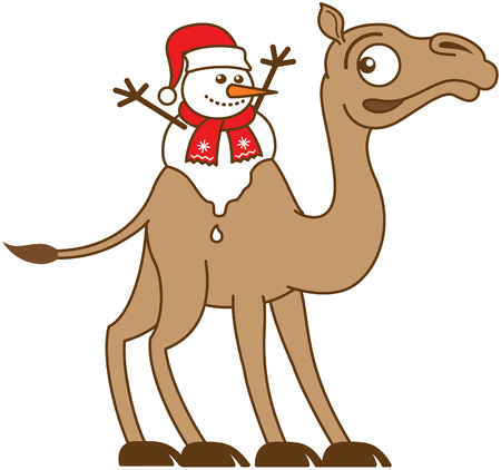 Cute Christmas snowman with red scarf and Santa hat melting while seated between the two fatty humps of the back of a very surprised and worried brown camel