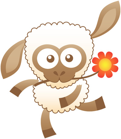 brown skin: Cute sheep with white wool brown skin and bulging eyes while swinging animatedly and holding a red flower with its mouth