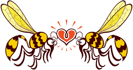 shiny heart: Impressive couple of wasps flying, staring at each other and forming a shiny heart with their antennae