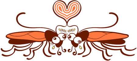 captivation: Funny couple of brown and orange cockroaches while posing in front of each other and expressing their love by forming an artistic heart with their antennae