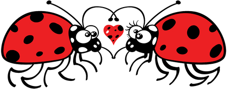 lovely couple: Lovely couple of ladybugs staring at each other tenderly and forming a big heart with their antennae. A funny spotted heart is floating between them