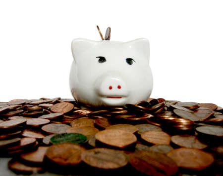 The Pig With All The Cash Banco de Imagens