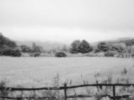 An old farm yard lost in fog.