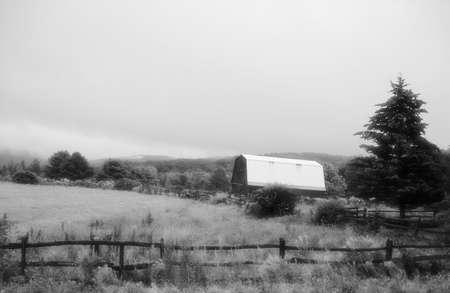 An old farm yard in fog. Zdjęcie Seryjne