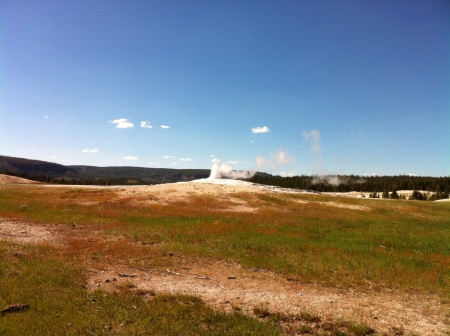 the faithful: Old faithful geyser