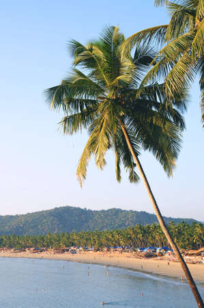 Palm trees with beautiful seascape on background with mountains, bay, sand beach and shacks. Stock Photo - 4339830