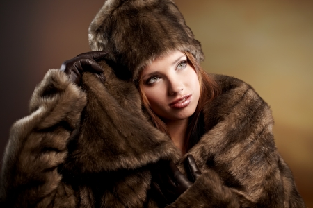 Attractive woman in brown  fur coat with hood Stock Photo - 8605438