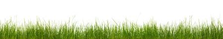 Extra grande franja horizontal de la hierba, suciedad y raíces aisladas sobre fondo blanco.