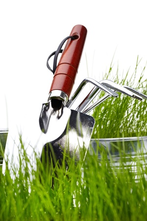 Garden tools with grass on white  photo