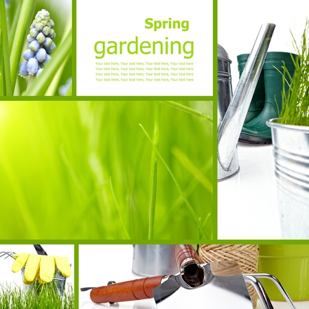 Collage garden and spring photo