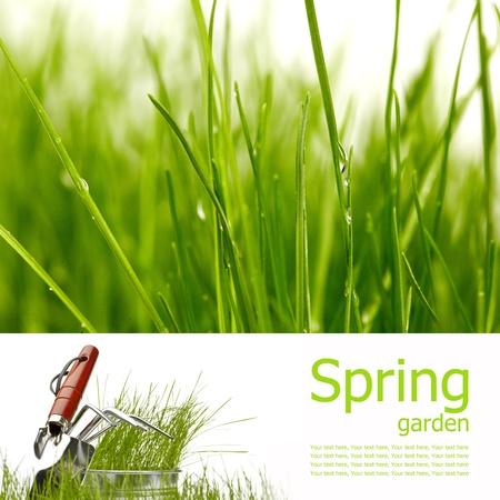 Spring board concept Stock Photo - 8872690
