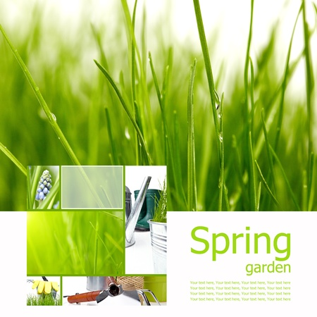 Spring board concept photo