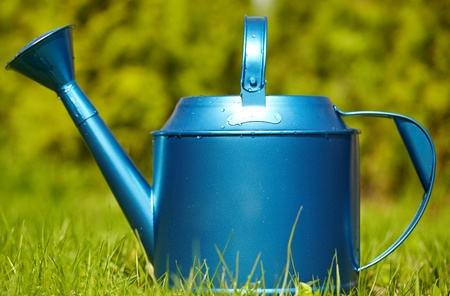 blue watering can in garden photo