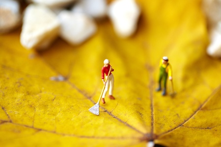 groundskeeper: Miniature figurine  using a rake to clean up of the fallen leaves
