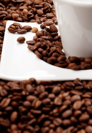 white coffee cup, costing on coffee grain photo