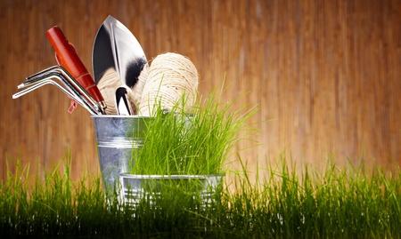weeding: Gardening tools and houseplants