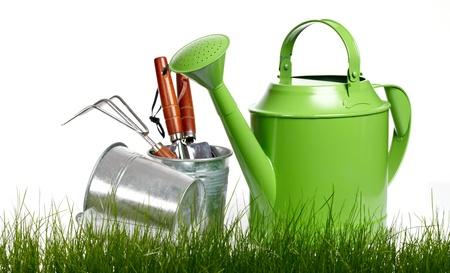 regar las plantas: Herramientas de jardín y poder de riego con la hierba en blanco