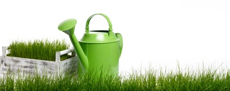 Extra large horizontal strip of grass and garden tools  on white background.  photo