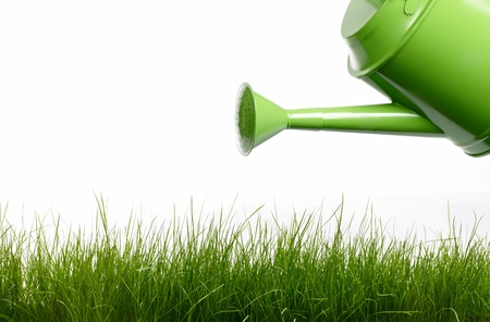 water can: Watering can and grass Stock Photo