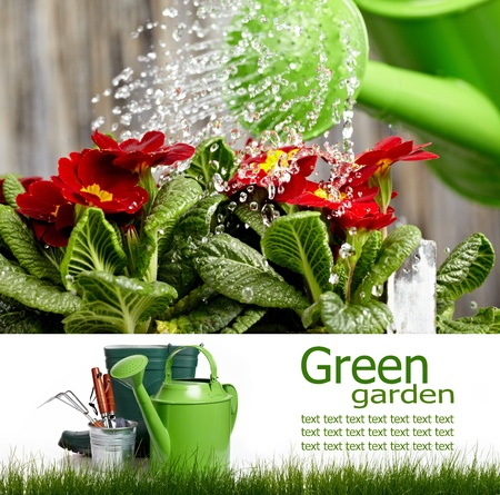 garden tools: Gardening  board concept