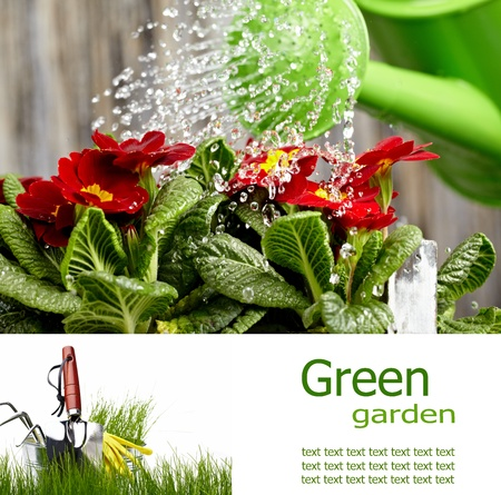 Gardening  board concept Stock Photo - 13036992