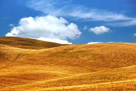 Scenic view of typical Tuscany landscape Stock Photo - 14074350