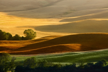 tuscan: Countryside landscape in Tuscany region of Italy  Stock Photo
